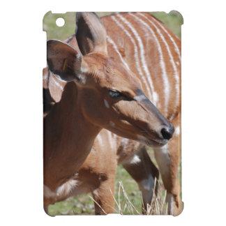 Nyala femenino iPad mini coberturas