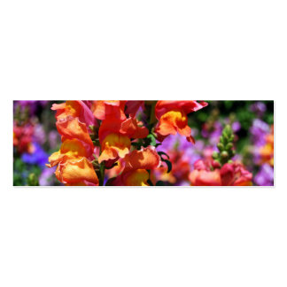 NYBG: No. 154 [Skinny] Double-Sided Mini Business Cards (Pack Of 20)