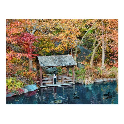 NYC Central Park Autumn, The Lake & Little Dock Post Cards
