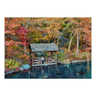 NYC Central Park Autumn, The Lake & Little Dock Poster