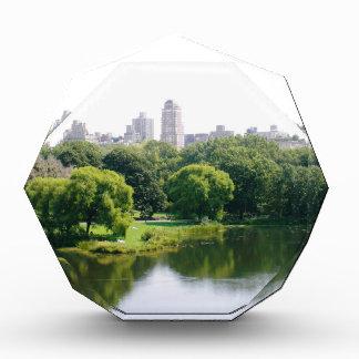 NYC Central Park Skyline Award