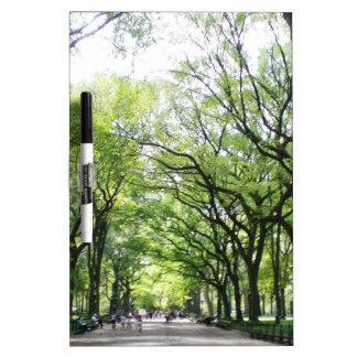 NYC Central Park Tree Tunnel Dry-Erase Board