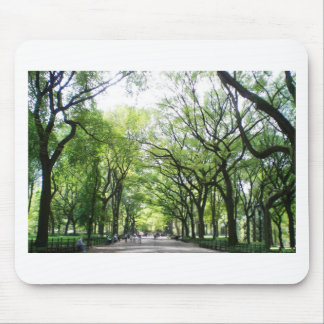 NYC Central Park Tree Tunnel Mouse Pad