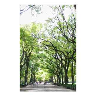 NYC Central Park Tree Tunnel Stationery