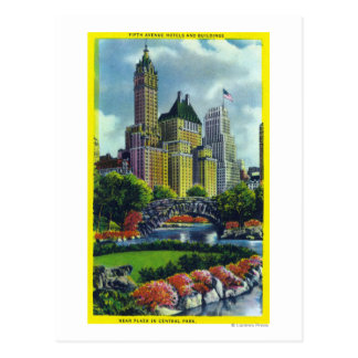 NYC Central Park View of 5th Ave Hotels Postcard