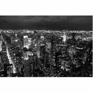 NYC ESCULTURA FOTOGRAFICA