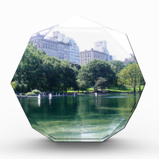 NYC Pond in Central Park Canvas Print Award
