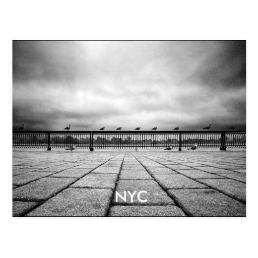 NYC POSTCARDS