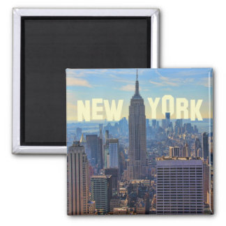 NYC Skyline Empire State Building, World Trade 2C Magnet