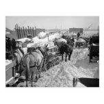 NYC Snow Job, 1899 Postcards