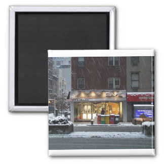 NYC winter magnet