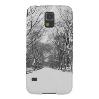 NYC's Central Park in Winter Case For Galaxy S5