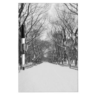NYC's Central Park in Winter Dry-Erase Board