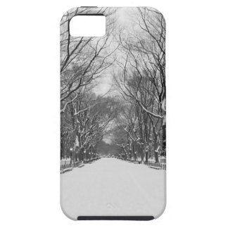 NYC's Central Park in Winter iPhone SE/5/5s Case