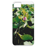 Nymphaea Flower Iphone 5 Case