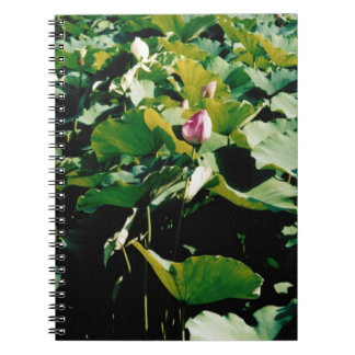 Nymphaea Flower Style Notebook