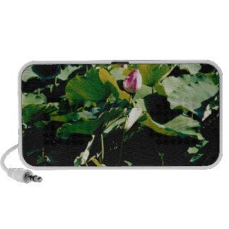 Nymphaea Flower Style Speaker System