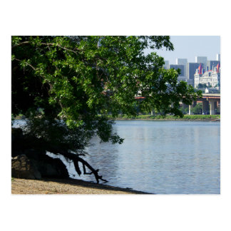 NYS Capitol in Albany from Hudson River Shore Postcard