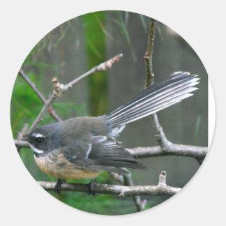 NZ Bird - Fantail Round Sticker