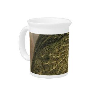 NZ Birds - Kakapo Semi-Abstract Drink Pitcher