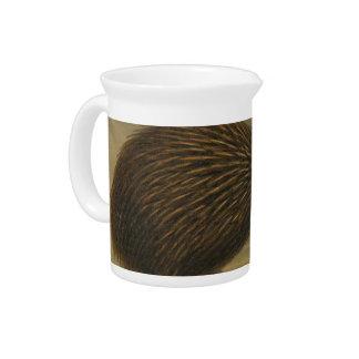 NZ Birds - Kiwi Semi-Abstract Beverage Pitcher