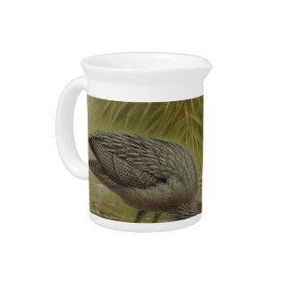 NZ Birds - NZ Herons Semi-Abstract Drink Pitcher