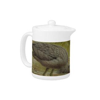 NZ Birds - NZ Herons Semi-Abstract Teapot
