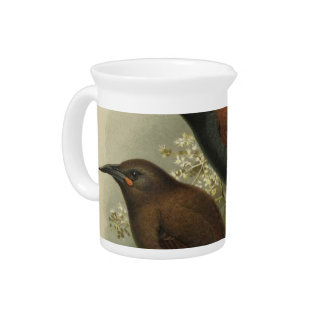 NZ Birds - Saddleback and Jack Bird Semi-Abstract Beverage Pitcher