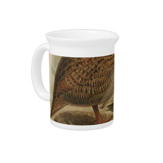 NZ Birds - Weka Semi-Abstract Drink Pitcher