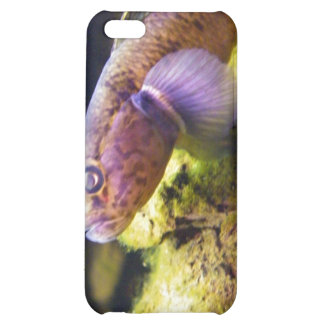 NZ Bully Case For iPhone 5C
