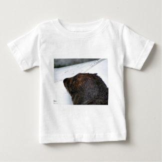 NZ Fur Seal Baby T-Shirt