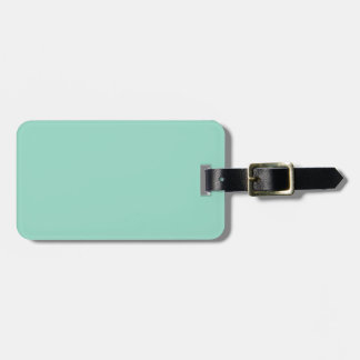 O01 Ocean Green Color Luggage Tag