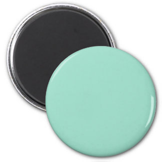 O01 Ocean Green Color Magnet