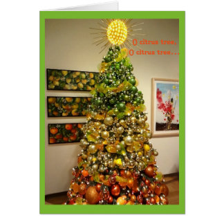 O Citrus Tree Photo Christmas Card From Florida