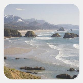O, costa de Oregon, parque de estado de Ecola, Colcomanias Cuadradases