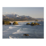 O, costa de Oregon, parque de estado de Ecola, vis Tarjetas Postales