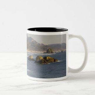O, costa de Oregon, parque de estado de Ecola, vis Taza De Café