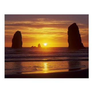 O costa de Oregon playa del cañón seastacks en Postales