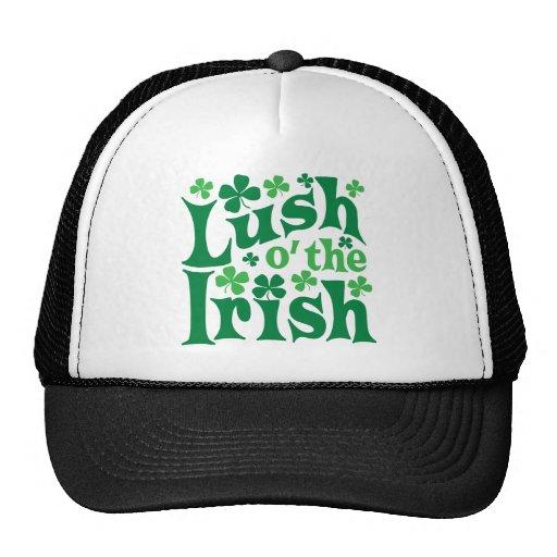 O enorme el irlandés gorros bordados