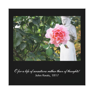 O for a life of sensations (Keats quote) Stretched Canvas Print