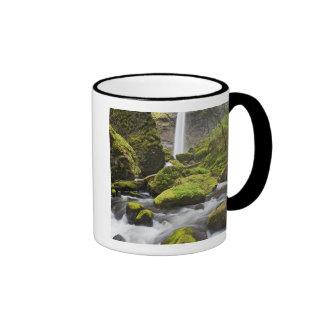 O, garganta del río Columbia, caídas de Elowah y Tazas