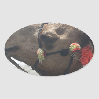 O man! Muscat Oval Sticker