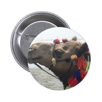 O man! Muscat Pinback Button