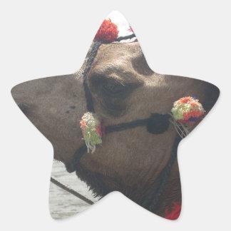 O man! Muscat Star Sticker