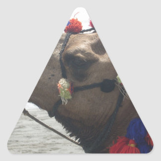 O man! Muscat Triangle Sticker