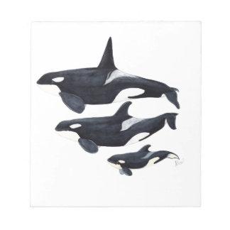 O.orca-fond transparent notepad