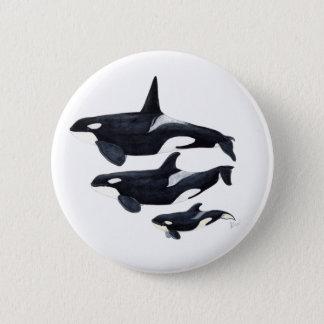 O.orca-fond transparent pinback button