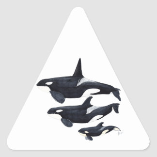 O.orca-fond transparent triangle sticker