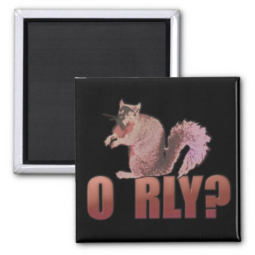 O RLY Squirrel 2 Inch Square Magnet