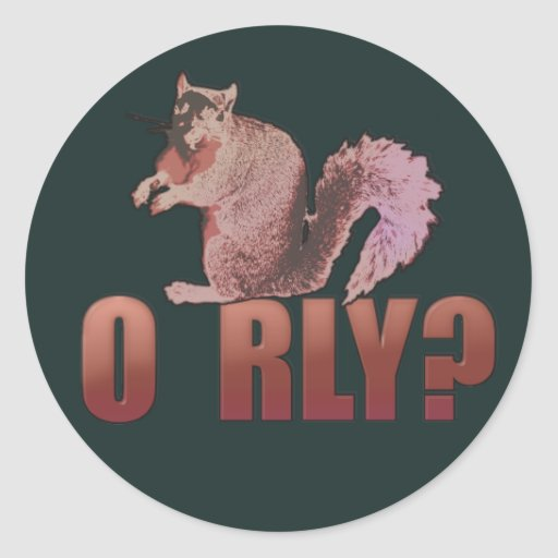 O RLY Squirrel Classic Round Sticker